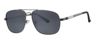 REVEX POLARIZED sunglasses κωδ. POL193-2 GUN