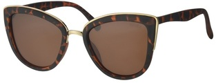 REVEX POLARIZED sunglasses κωδ.-POL6006-2-BROWN